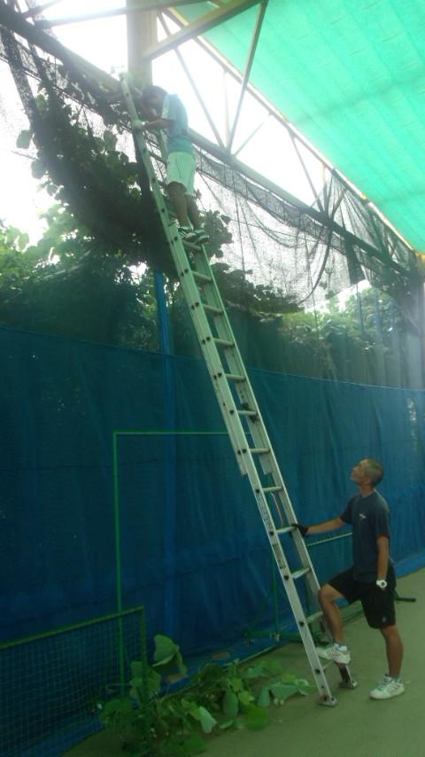 1309村沢コーチはしご1